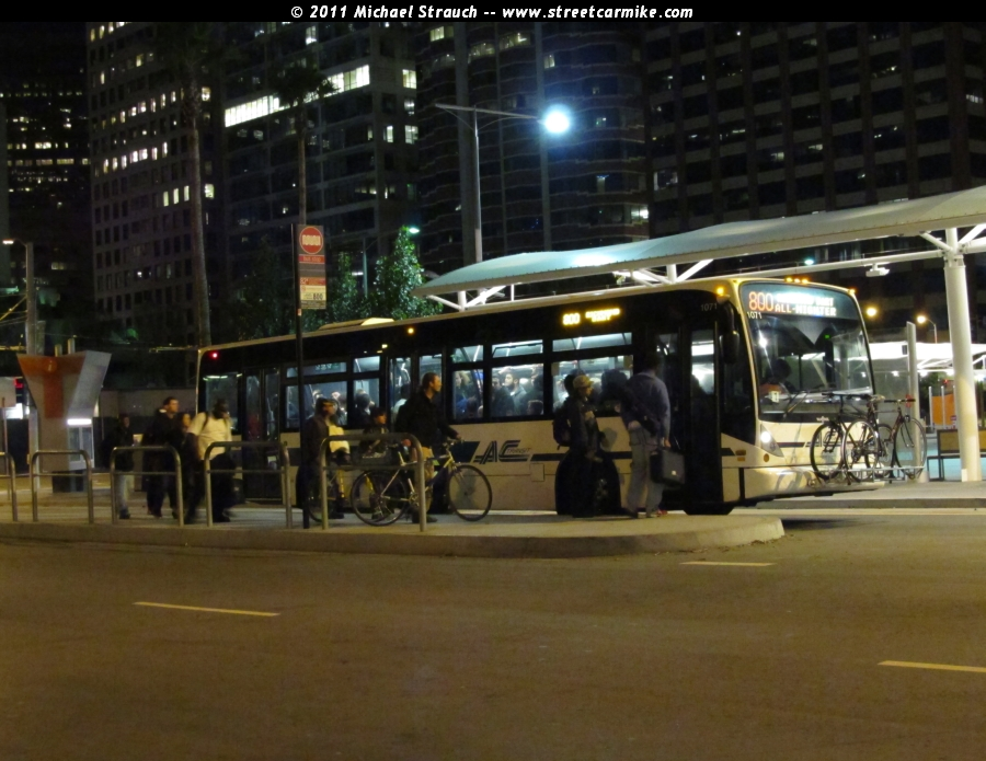 San Francisco Bay Area All Nighter Owl Buses